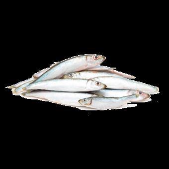 """Fisch """"am Stück"""" gefroren 500g"""